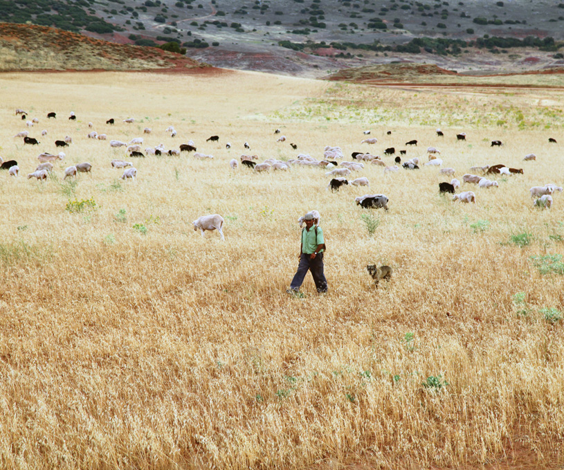 Nuestro campo. Nuestra gente