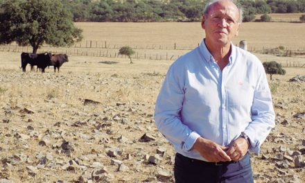 Felipe Lasanta Marín, uno de los cuatro administradores de la ganadería de Víctor y Marín