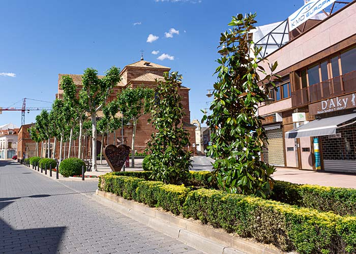 Se han colocado más de un centenar de árboles en el plan de arbolado viario en Alcázar de San Juan en los últimos meses